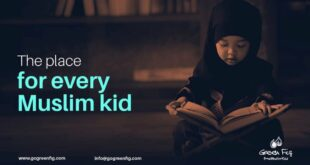 غرين فيغ تجرية رائدة في عالم الطفولة والطلاب